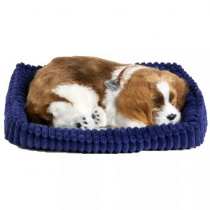 Perfect Petzzz Cavalier King Charles 96309 Braun 0737412996309