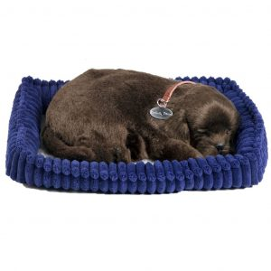 Perfect Petzzz Chocolate Labrador 96231 Braun 0737412996231